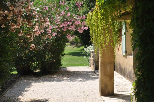 Private walk, gardens, oleander and wine to the villa La Bergerie at Moulin de la Roque, Noves - terrace